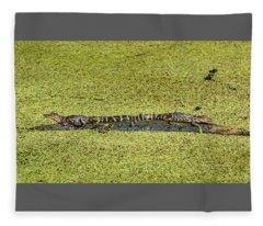 Two Young Gators Fleece Blanket