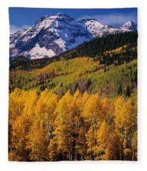 Uncompahgre National Forest Co Usa Fleece Blanket