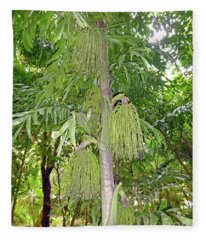 Under A Tropical Tree Fleece Blanket