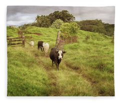 Upcountry Ranch Fleece Blanket