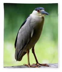 Upstanding Heron Fleece Blanket