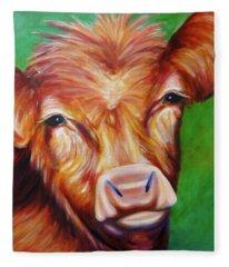 Van Fleece Blanket