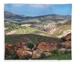 Vasquez Rocks Park Fleece Blanket