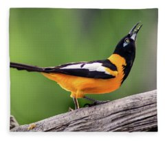 Venezuelan Troupial Fleece Blanket
