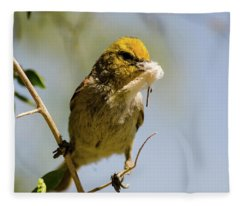 Verdin Building A Nest Fleece Blanket