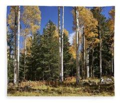 Vibrancy Of Autumn I Fleece Blanket