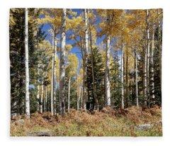 Vibrancy Of Autumn Iv Fleece Blanket