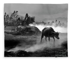 Vietnamese Water Buffalo  Fleece Blanket