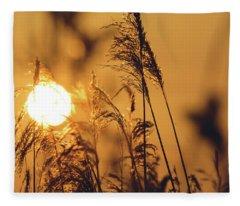 View Of Sun Setting Behind Long Grass C Fleece Blanket