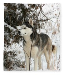 Vigilant Fleece Blanket