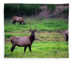 Vigilant Fleece Blanket