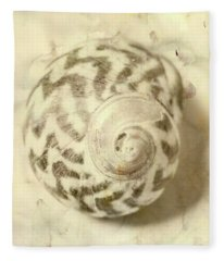 Vintage Seashell Still Life Fleece Blanket