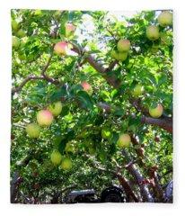 Vintage Tractor In Apple Orchard Fleece Blanket