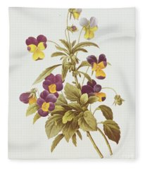 Viola Tricolour  Fleece Blanket