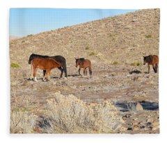 Virginia Range Mustangs Fleece Blanket