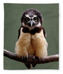 Visual Definition Of Adorable Fleece Blanket