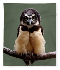 Visual Definition Of Adorable Fleece Blanket