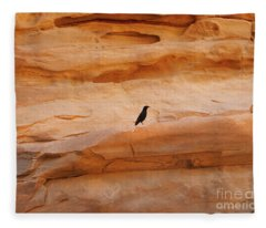 Wadi Rum Birds Fleece Blanket
