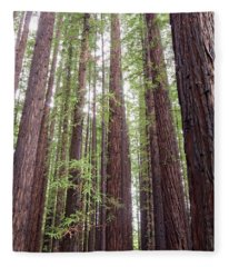 Walk Tall As Trees Fleece Blanket