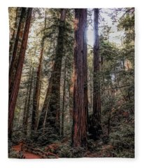 Walk Through Muir Woods Fleece Blanket