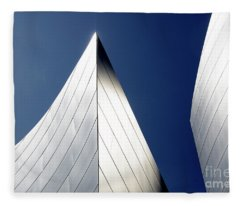 Walt Disney Concert Hall 41 Fleece Blanket