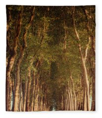 Warm French Tree Lined Country Lane Fleece Blanket