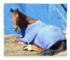 Warm Winter Day At The Horse Barn Fleece Blanket
