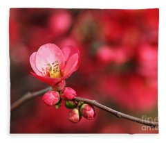 Warmth Of Flowering Quince Fleece Blanket