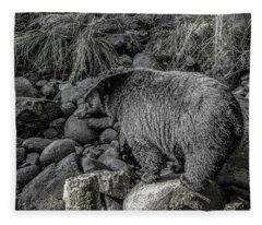 Watching Black Bear Fleece Blanket