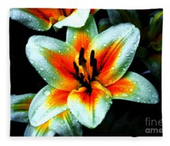 Water Droplet Covered White Lily  Fleece Blanket
