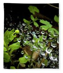 Water Droplets On A Spider's Web Fleece Blanket