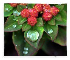 Water Drops On Christmas Flower Fleece Blanket