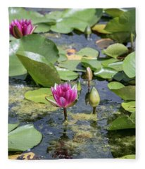 Water Lilies At Giverny - 3 Fleece Blanket