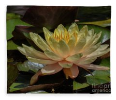 Water Lily 1 Fleece Blanket
