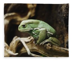 Waxy Monkey Frog Fleece Blanket