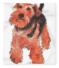 Welsh Terrier Or Schnauzer Watercolor Painting By Kmcelwaine Fleece Blanket