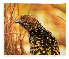 Western Bowerbird Fleece Blanket