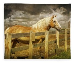 Western Horse In Alberta Canada Fleece Blanket