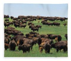 Western Kansas Buffalo Herd Fleece Blanket