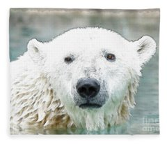 Wet Polar Bear Fleece Blanket