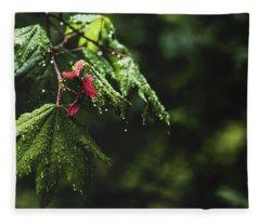 Whirlygig Fleece Blanket