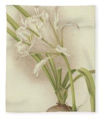 White Amaryllis   Ismene Andreana Fleece Blanket