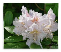 White And Pink Rhododendron Fleece Blanket