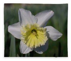 White And Yellow Daffodil Fleece Blanket