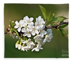 White Apple Blossoms Fleece Blanket