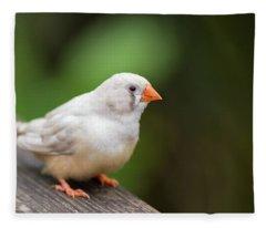 White Bird Standing On Deck Fleece Blanket