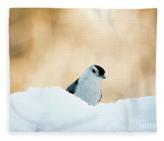 White Breasted Nuthatch In Snow Fleece Blanket