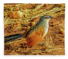 White-browed Coucal Fleece Blanket
