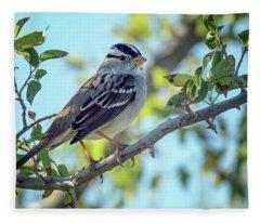 White-crowned Sparrow 0033-111017-1cr Fleece Blanket