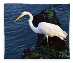 White Egret At Sunrise - Barnegat Bay Nj  Fleece Blanket